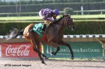 Awesome Feather (FL) wins 4 for 4 in the Florida Stallion Stakes Susan's Girl Division